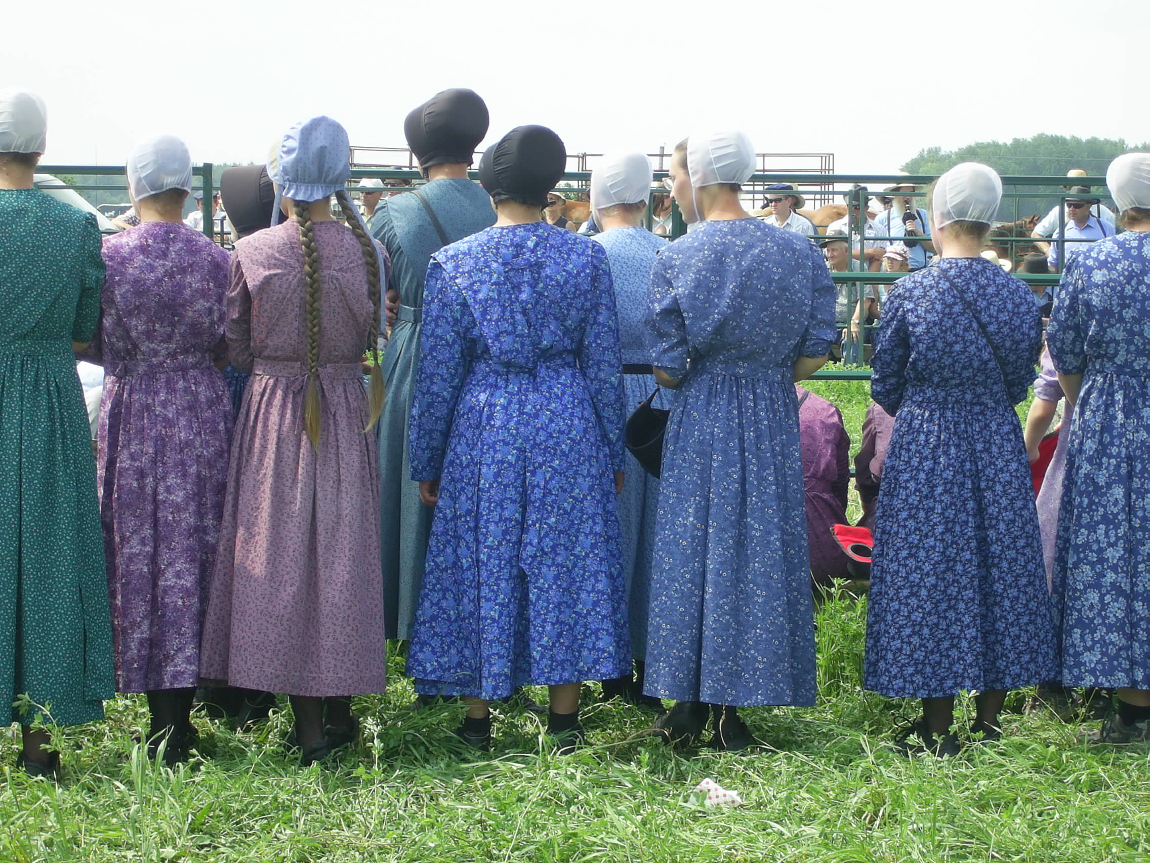 amish open their homes businesses for tours in perth east